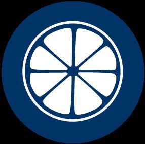 Blue Icon of an Orange