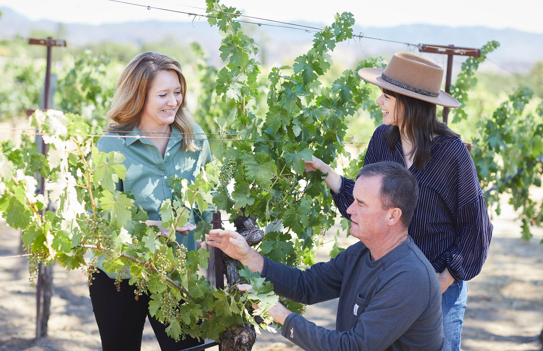 Winemakers Megan Gunderson, Alison Frichtl-Hollis and Viticulturist Don Monk looking at grape vines image