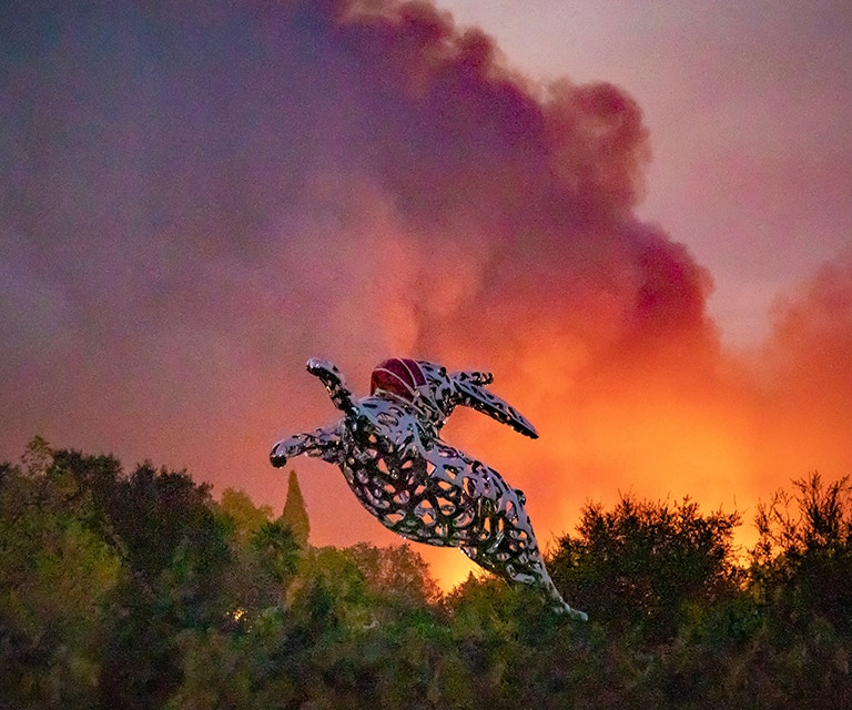Bunny Foo Foo with Glass Fire in the background on Spring Mountain image. Photo by Michael Cuffe, Photojournalist