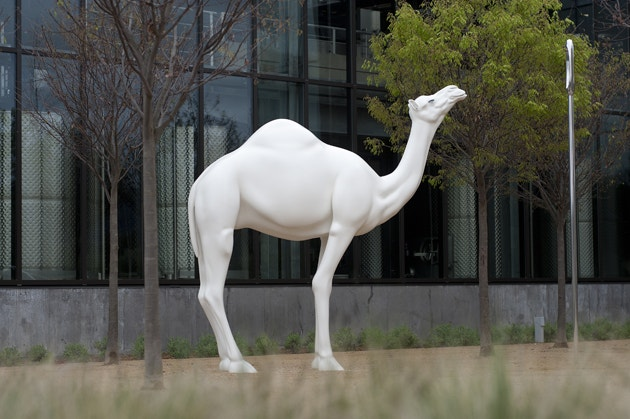 John Baldessari - Camel Contemplating Needle